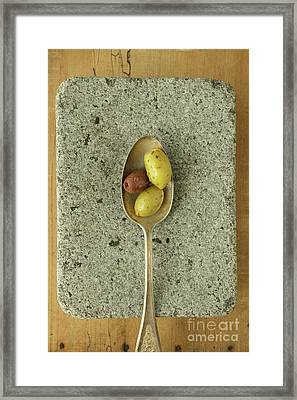 Greek Olives Framed Print