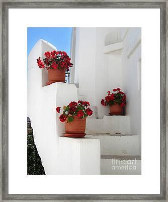 Greek Steps  Framed Print by Jane Rix