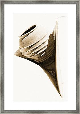 Greek Urn Framed Print