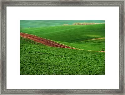 Green Abstract Of Farmland Framed Print by Jenny Rainbow