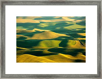 Green And Gold Acres Framed Print