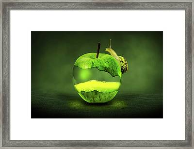 Green Apple And Snail Framed Print
