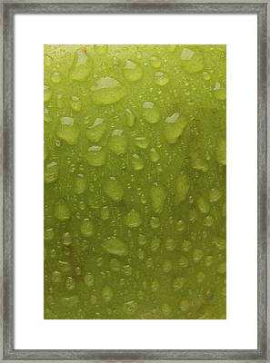 Green Apple Skin Framed Print by Steve Gadomski