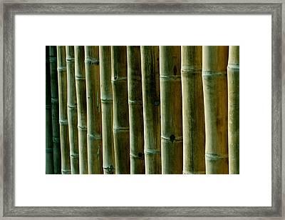Green Bamboo Framed Print by Heike Hultsch