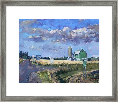 Green Barn In Glen Williams On Framed Print
