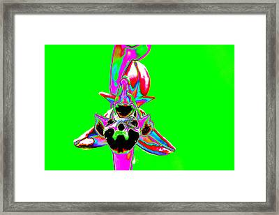 Green Bee Orchid Framed Print
