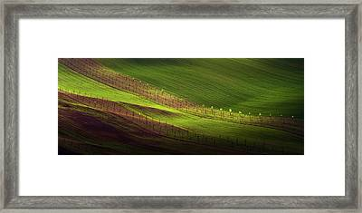 Green Belts Of Fields Framed Print