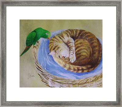 Green Bird Framed Print by Lian Zhen