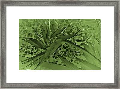 Framed Print featuring the photograph Green Bird Of Paradise by Nareeta Martin