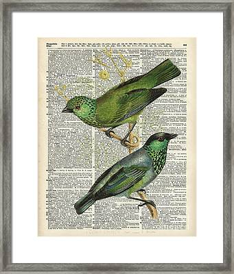 Green Canary Birds Couple Over Vintage Dictionary Book Page Framed Print