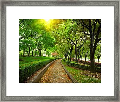 Green City Park. Shanghai, China Framed Print by Caio Caldas