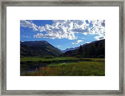 Green Creek Meadow 2 Framed Print