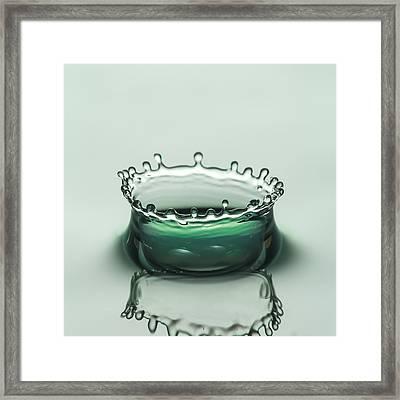 Green Crown Framed Print by Noah Katz