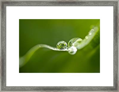 Green Crystal Framed Print