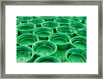 Green Framed Print by Dan Holm