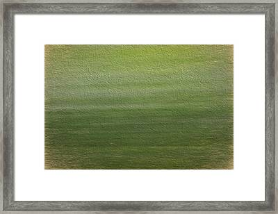 Green Framed Print by Dan Sproul