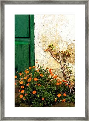 Green Door - Orange Flowers Framed Print by Georgia Nick