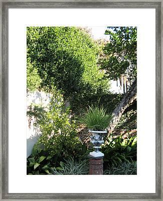 Green Door 13 Framed Print by Tom Hefko