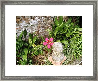 Green Door 17 Framed Print by Tom Hefko