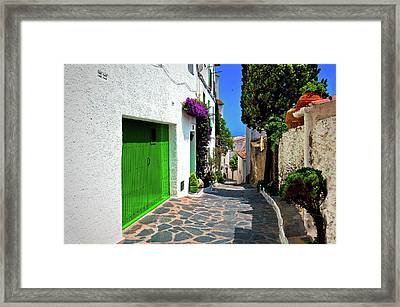 Framed Print featuring the photograph Green Door Passage  by Harry Spitz