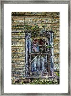 Green Door Framed Print