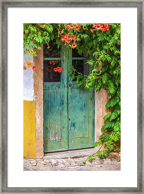 Green Door With Vine Framed Print