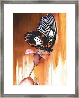 Green Eye Butterfly Framed Print