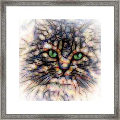 Green Eye Kitty Square Framed Print by Terry DeLuco
