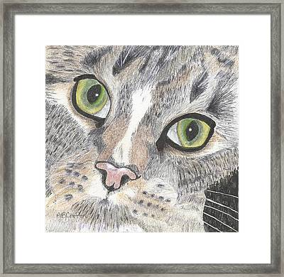 Framed Print featuring the drawing Green Eyes by Arlene Crafton