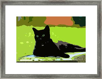 Green Eyes Framed Print by David Lee Thompson