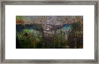 Green Eyes' Reflections Framed Print by Carole Guillen