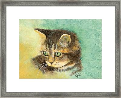 Green Eyes Framed Print by Terry Webb Harshman
