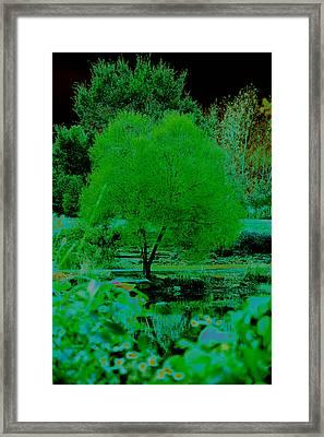 Green Fantasy Framed Print by Etha  Walters