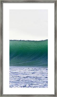 Green Feather  -  Part 3 Of 3 Framed Print by Sean Davey