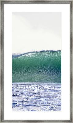 Green Feather  -  Part 2 Of 3 Framed Print by Sean Davey