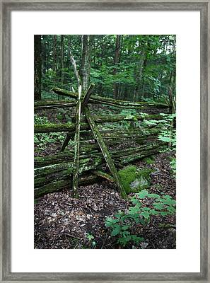 Green Fence Framed Print by Pat Purdy