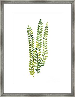 Green Fern Watercolor Minimalist Painting Framed Print