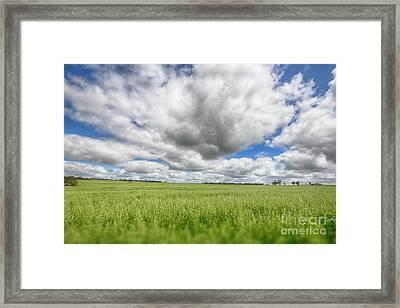 Framed Print featuring the photograph Green Fields 2 by Douglas Barnard