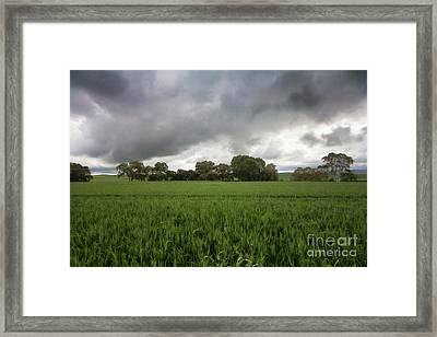 Framed Print featuring the photograph Green Fields 5 by Douglas Barnard
