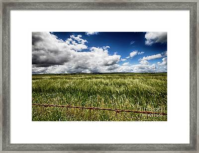 Framed Print featuring the photograph Green Fields by Douglas Barnard
