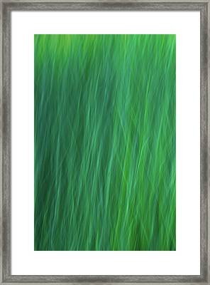 Green Fire 6 Framed Print