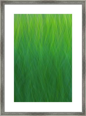 Green Fire 7 Framed Print