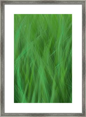 Green Fire 8 Framed Print