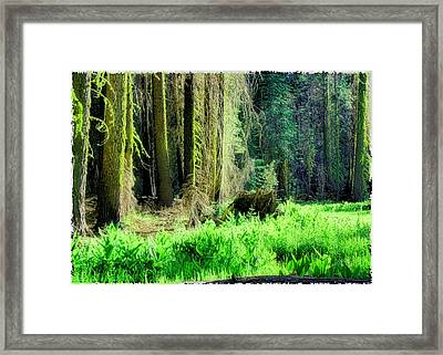 Green Forest Framed Print by Michael Cleere