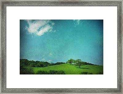 Green Grass Blue Sky Framed Print by Laurie Search