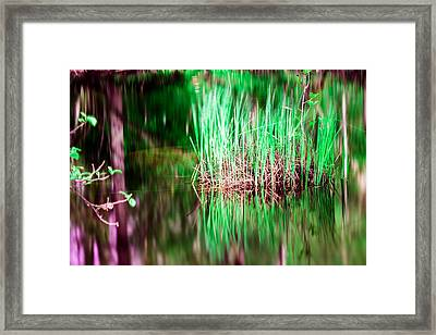 Green Grass In Water Framed Print by Tommytechno Sweden