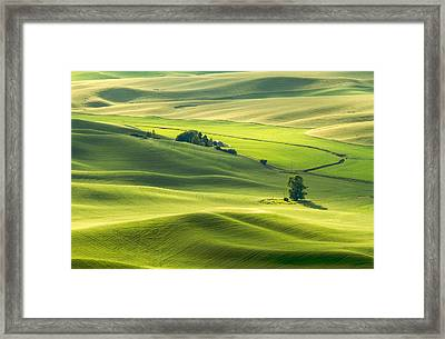 Framed Print featuring the photograph Green Green Grass Of Home by Patricia Davidson