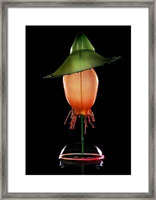 Green Hat Framed Print