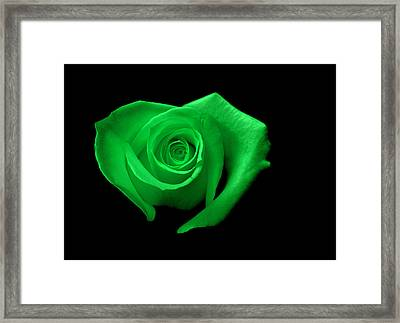 Green Heart-shaped Rose Framed Print by Glennis Siverson