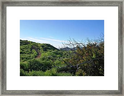 Framed Print featuring the photograph Green Hills And Bushes Landscape by Matt Harang